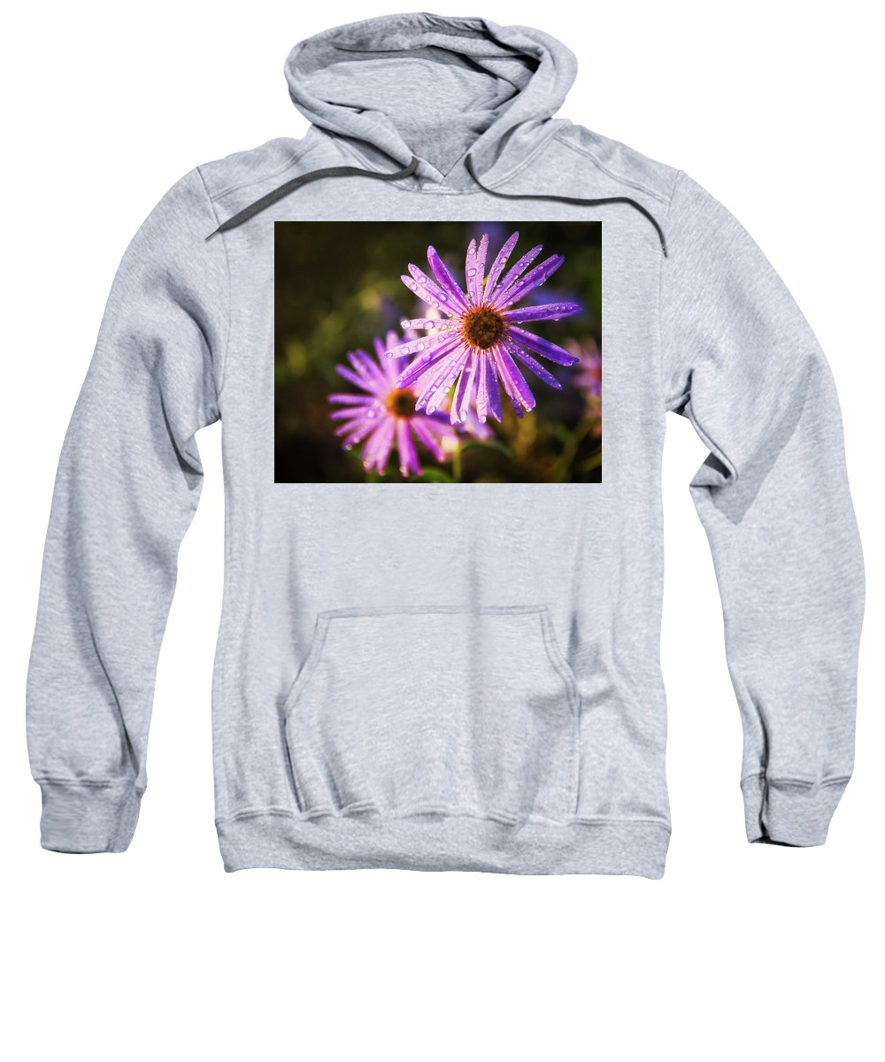Flowers Sweatshirt featuring the photograph Rainy Day Flowers by David Hollenback