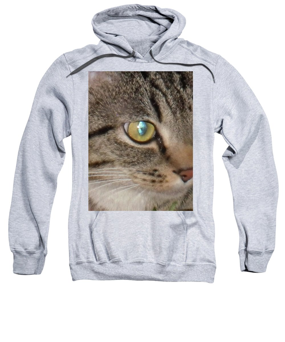 Cat Sweatshirt featuring the photograph Grace Bring Me Kittens by Adora Miller