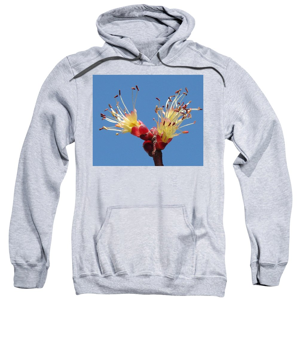 Sweatshirt featuring the photograph Re-awakening by Luciana Seymour