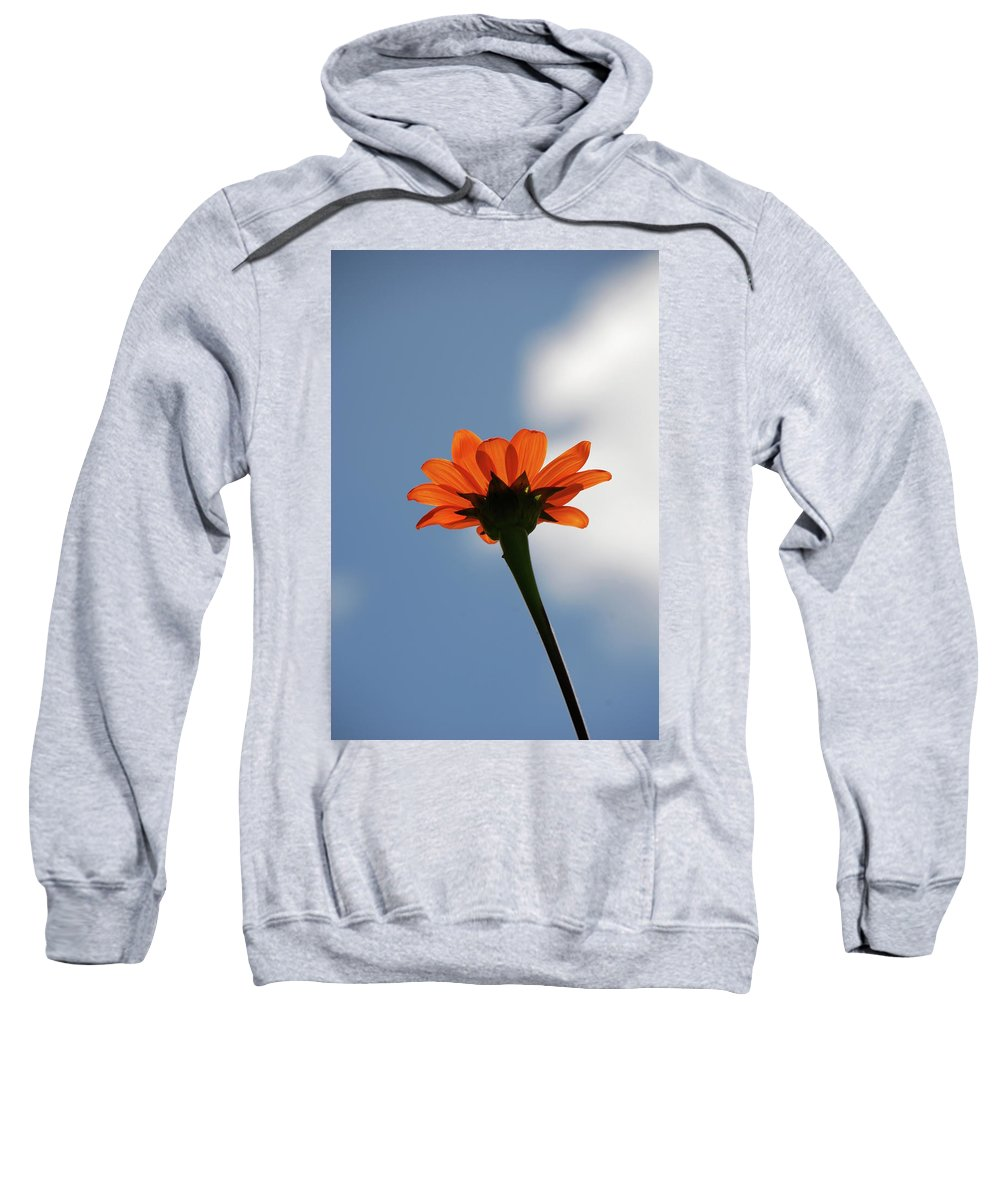 Orange Flower Sweatshirt featuring the photograph Reach For The Sky by Debbie Karnes