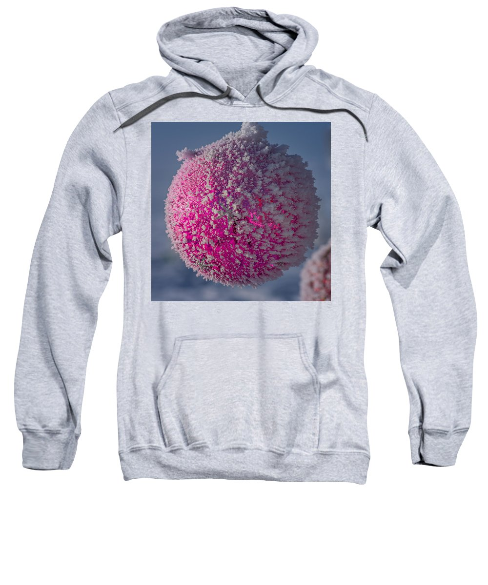 Chistmas Sweatshirt featuring the photograph Red Christmas Decoration With Frost In Winter by John Brink