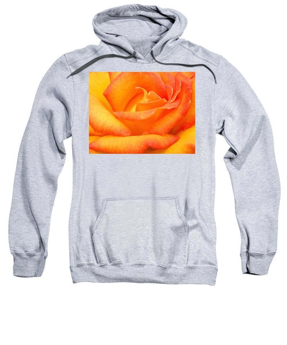 Rose Sweatshirt featuring the photograph Red Gold Rose by Will Borden