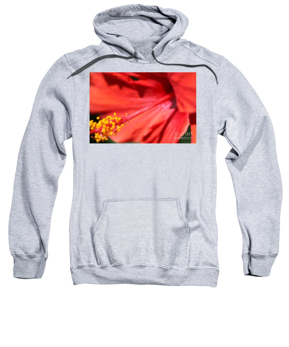 Red Sweatshirt featuring the photograph Red Hibiscus by Nadine Rippelmeyer