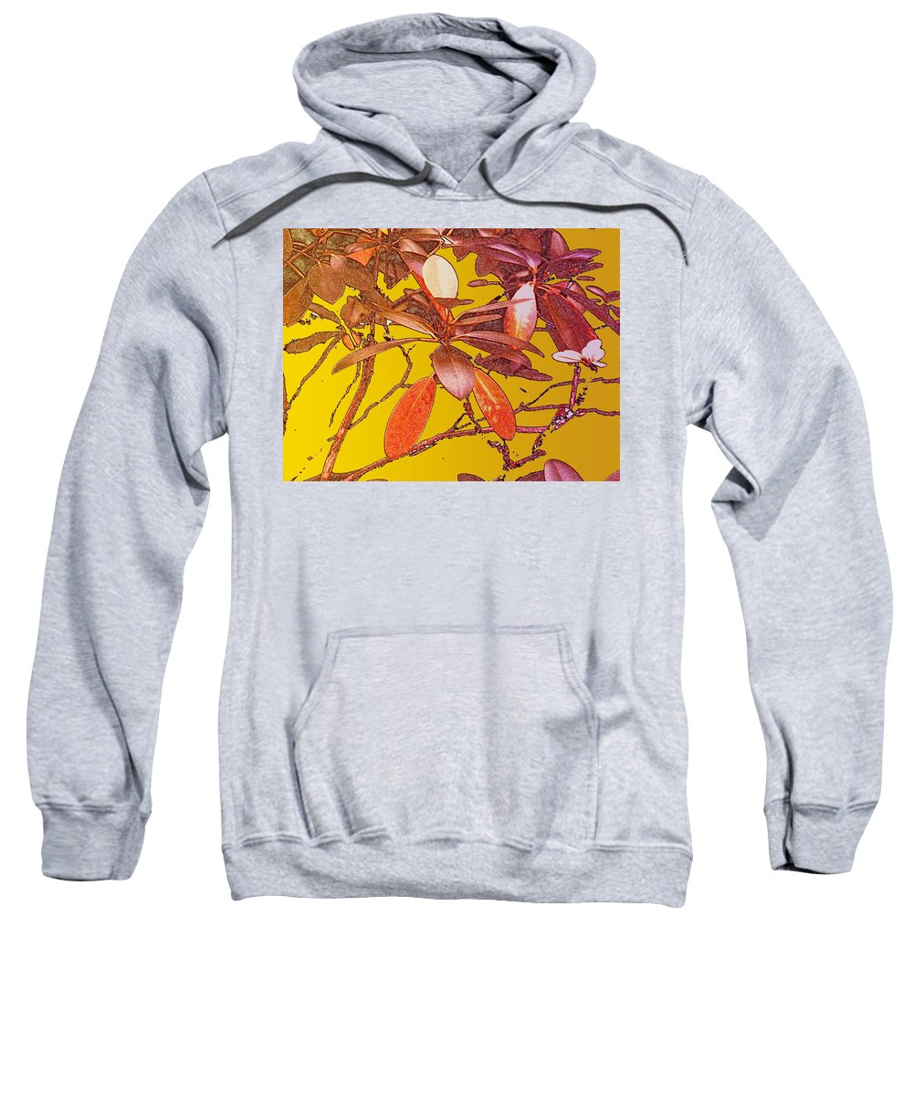Red Sweatshirt featuring the photograph Red Leaves Gold Sunset by Ian MacDonald