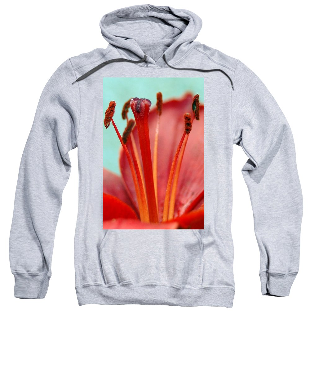 Flower Sweatshirt featuring the photograph Red Lily Reach by Amy Fose