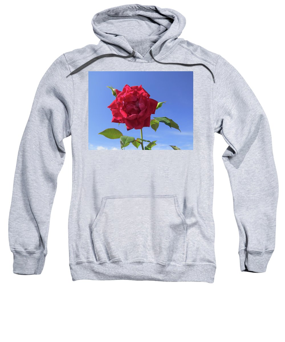 Rose Sweatshirt featuring the photograph Red On Blue by Zina Stromberg