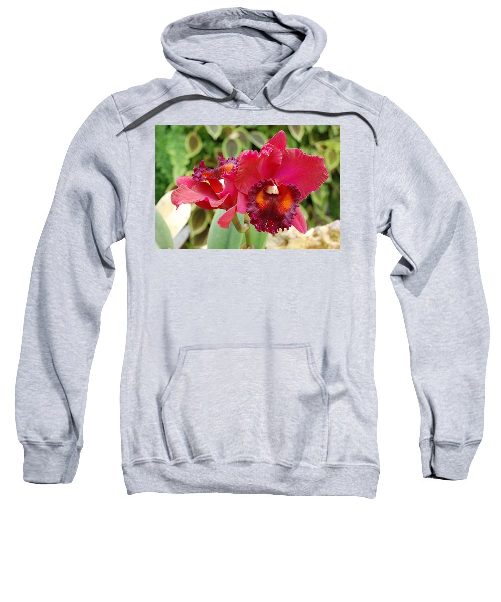 Macro Sweatshirt featuring the photograph Red Orchid by Rob Hans