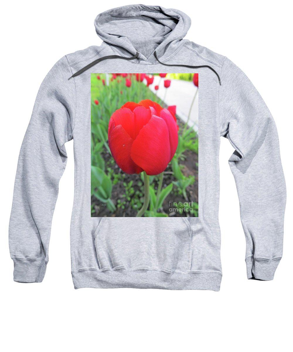 Tulips Sweatshirt featuring the photograph Red Tulip by Galina Lavrova