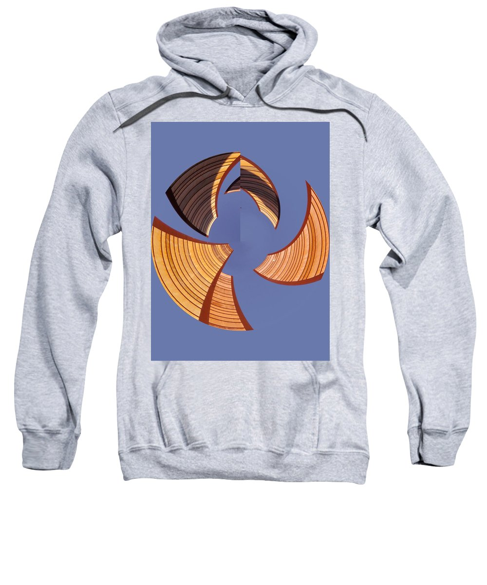 Seattle Sweatshirt featuring the photograph Reeds 1 by Tim Allen