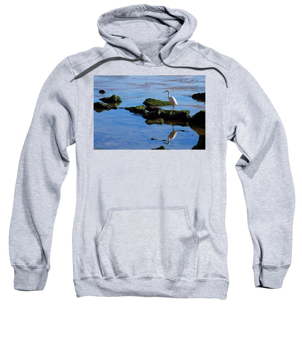 Clay Sweatshirt featuring the photograph Reflecting On Dinner by Clayton Bruster
