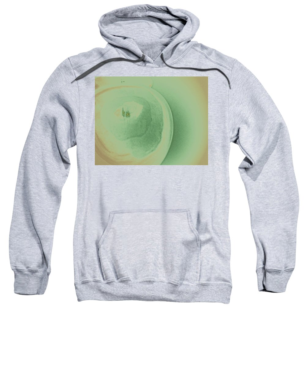 Abstract Sweatshirt featuring the digital art Reflections In Stone 2 by Lenore Senior