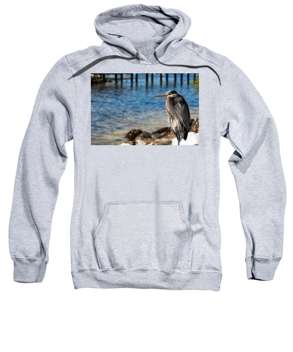 Heron Sweatshirt featuring the photograph Regal Great Blue Heron by Rich Leighton