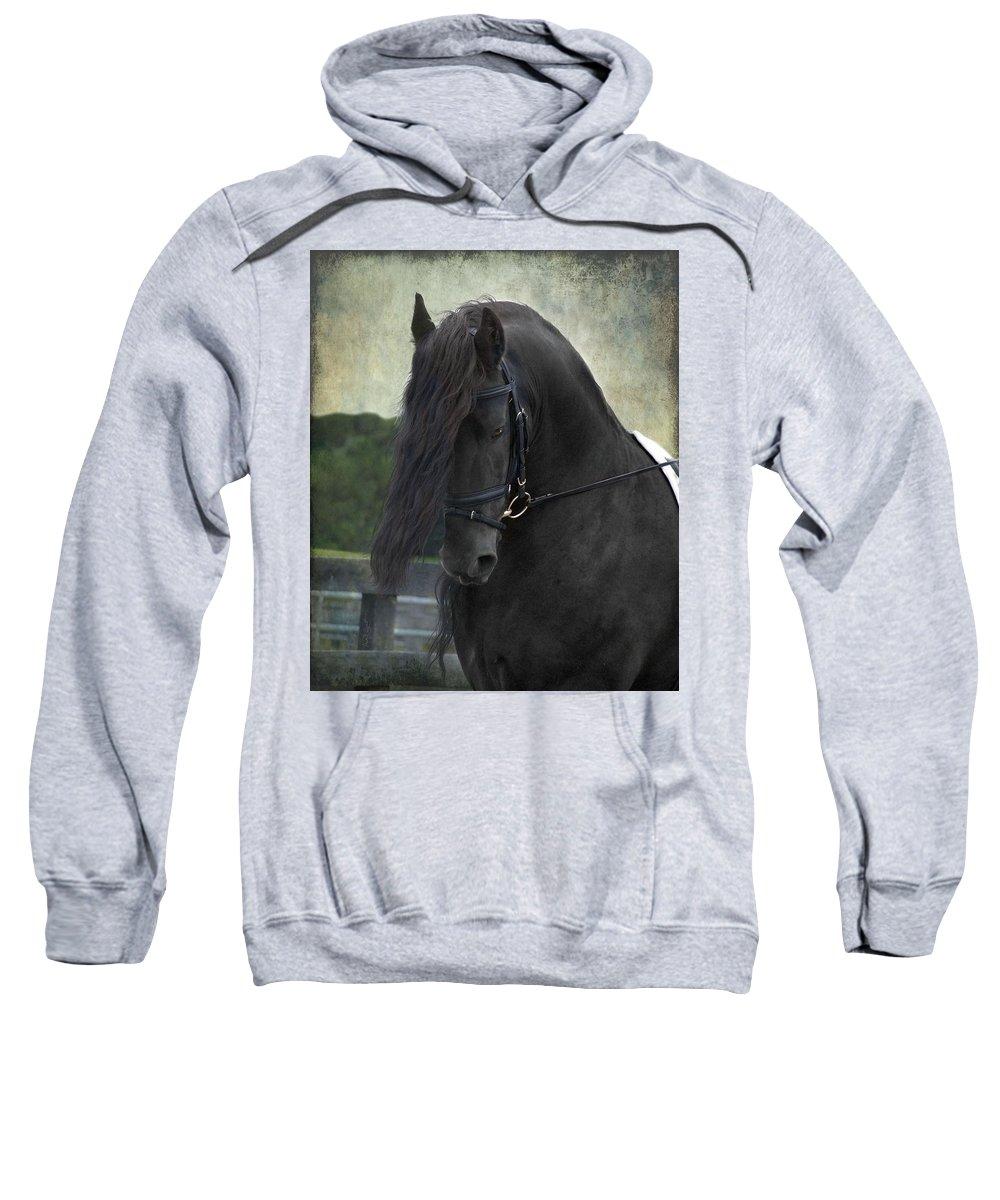 Horses Sweatshirt featuring the photograph Remme by Fran J Scott