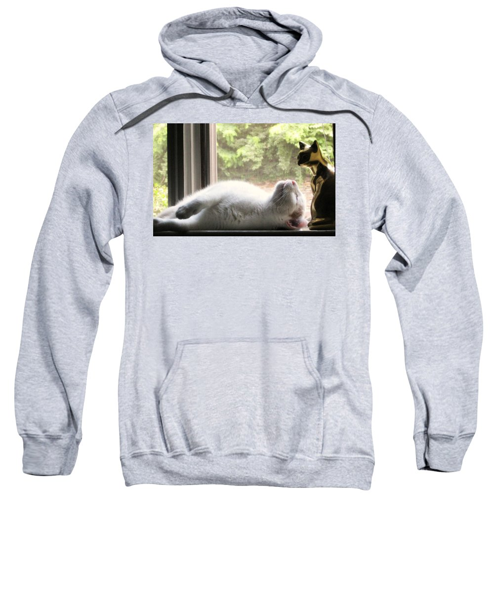 Cat Sweatshirt featuring the photograph Rest In Peace by Cara Imperato