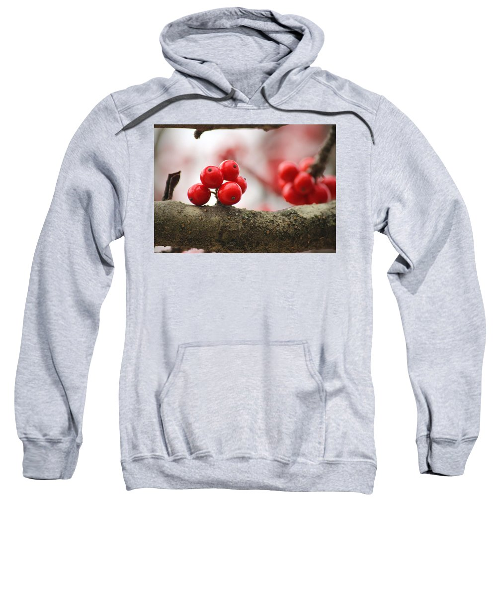 Nature Sweatshirt featuring the photograph Resting Winter Berries by Aaliyah Muhammad