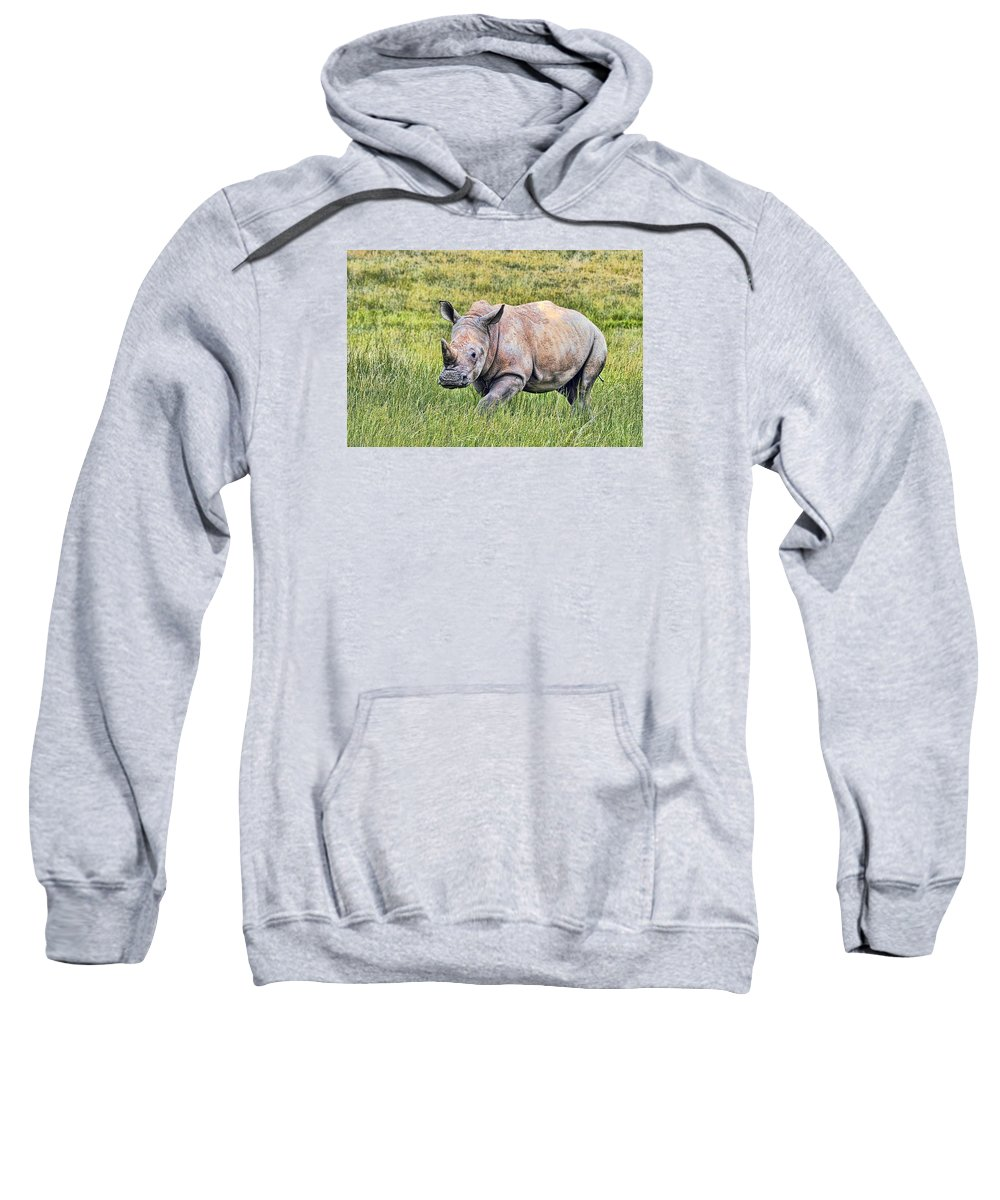 Southern Sweatshirt featuring the photograph Rhinosceros by Marcia Colelli