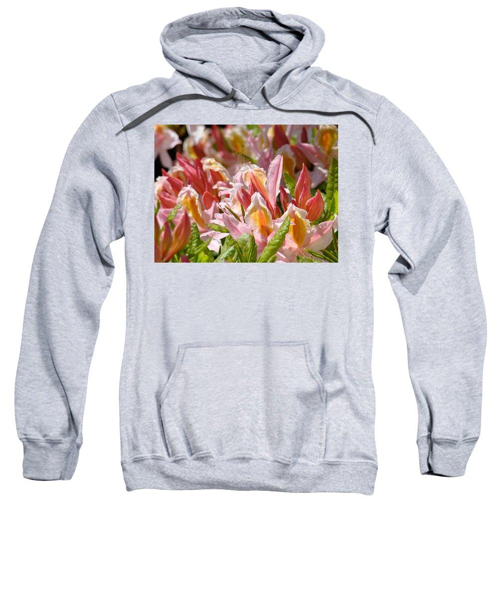Rhodie Sweatshirt featuring the photograph Rhodies Flowers Art Prints Pink Orange Rhododendron Floral Baslee Troutman by Baslee Troutman