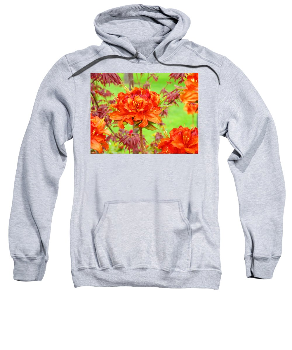 Rhodie Sweatshirt featuring the photograph Rhododendron Flower Landscape Art Prints Floral Baslee Troutman by Baslee Troutman