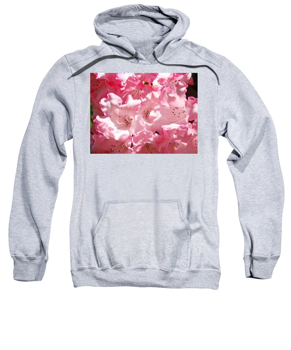 Rhodies Sweatshirt featuring the photograph Rhododendrons Flowers Art Print Pink Rhodies Baslee Troutman by Baslee Troutman