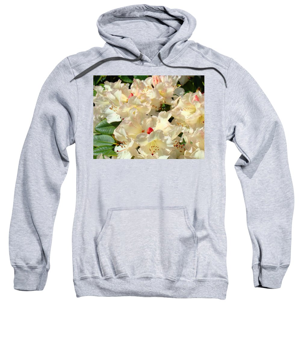 Rhodies Sweatshirt featuring the photograph Rhododenrons Floral Art Prints Yellow Pink Rhodies Baslee Troutman by Baslee Troutman