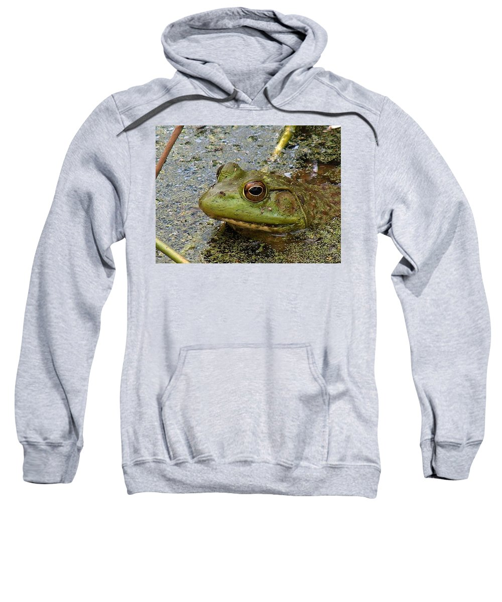 Frogs Sweatshirt featuring the photograph Ribbit Ribbit by Lisa Stanley