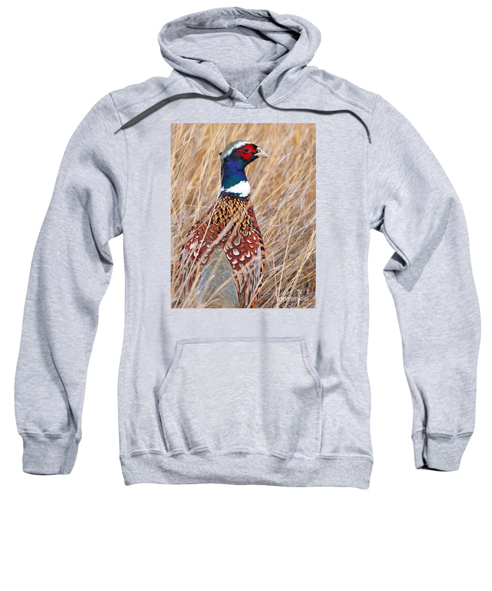 Ring-necked Sweatshirt featuring the photograph Ring-necked Pheasant by Brad Christensen