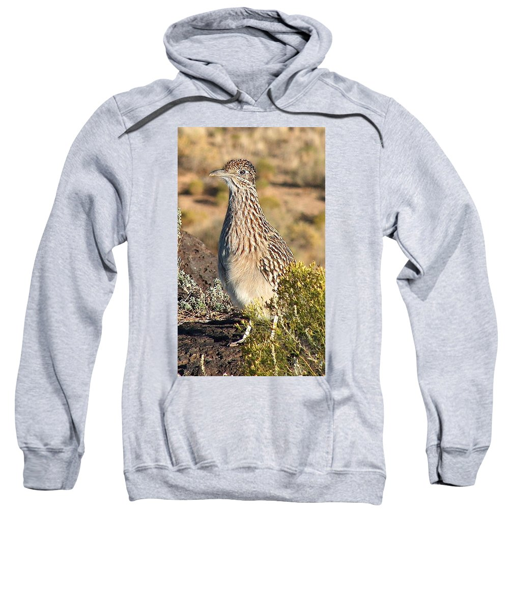 Roadrunner Sweatshirt featuring the photograph Roadrunnner At The Petroglyphs by Tim McCarthy
