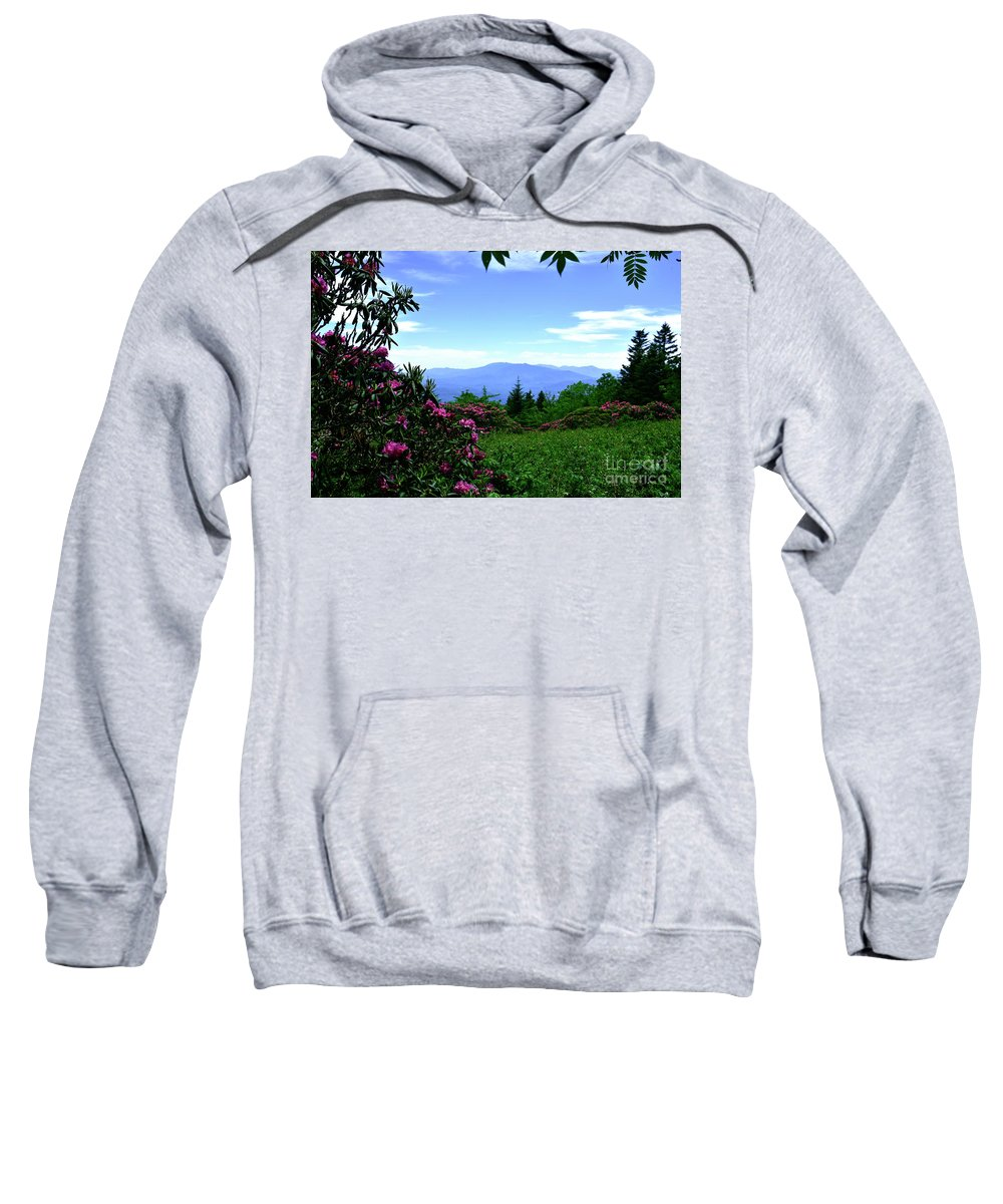 Pink Sweatshirt featuring the photograph Roan Mountain Rhododendron Gardens by Christal Randolph