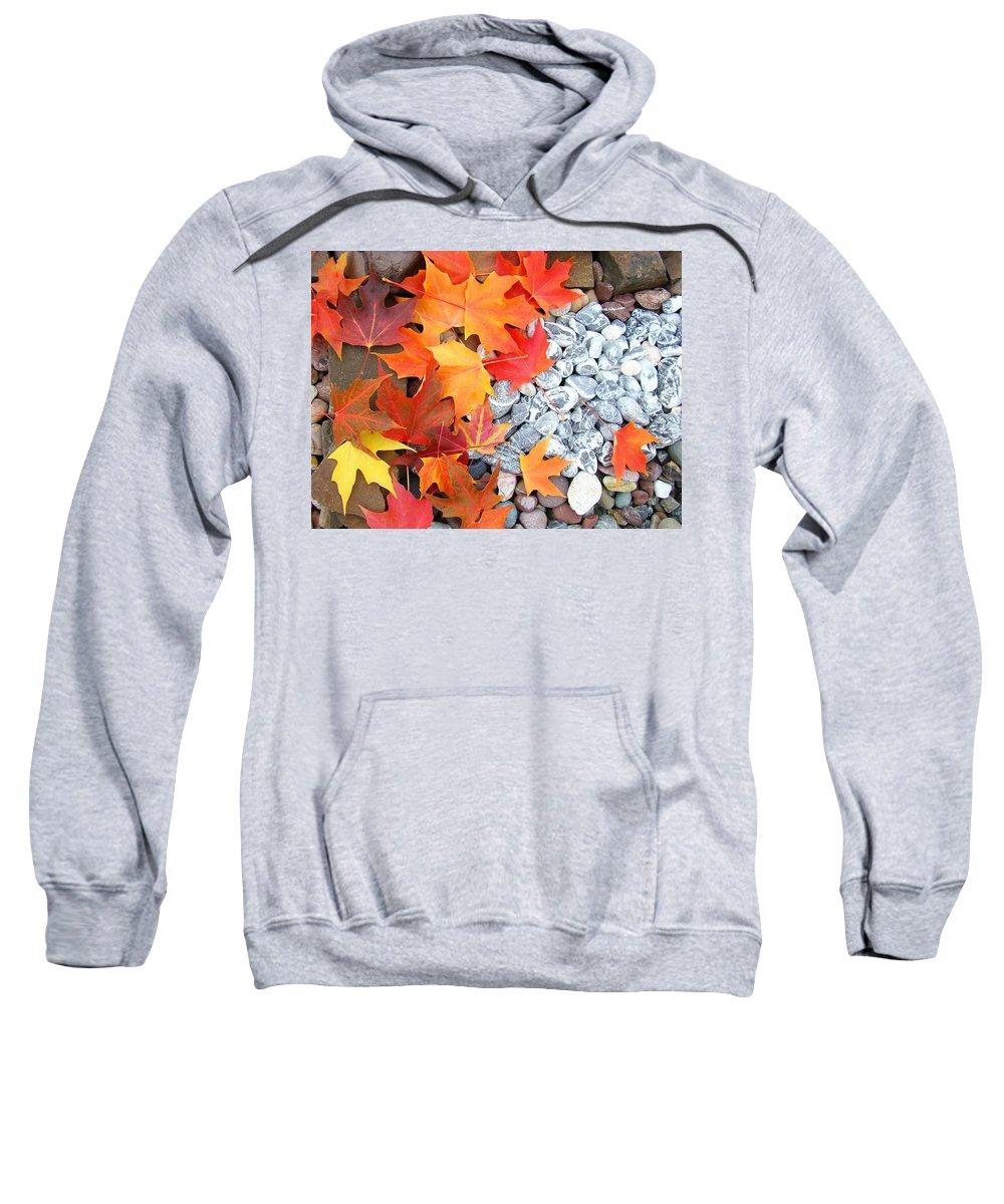 Autumn Sweatshirt featuring the photograph Rock Garden Autumn Leaves by Baslee Troutman