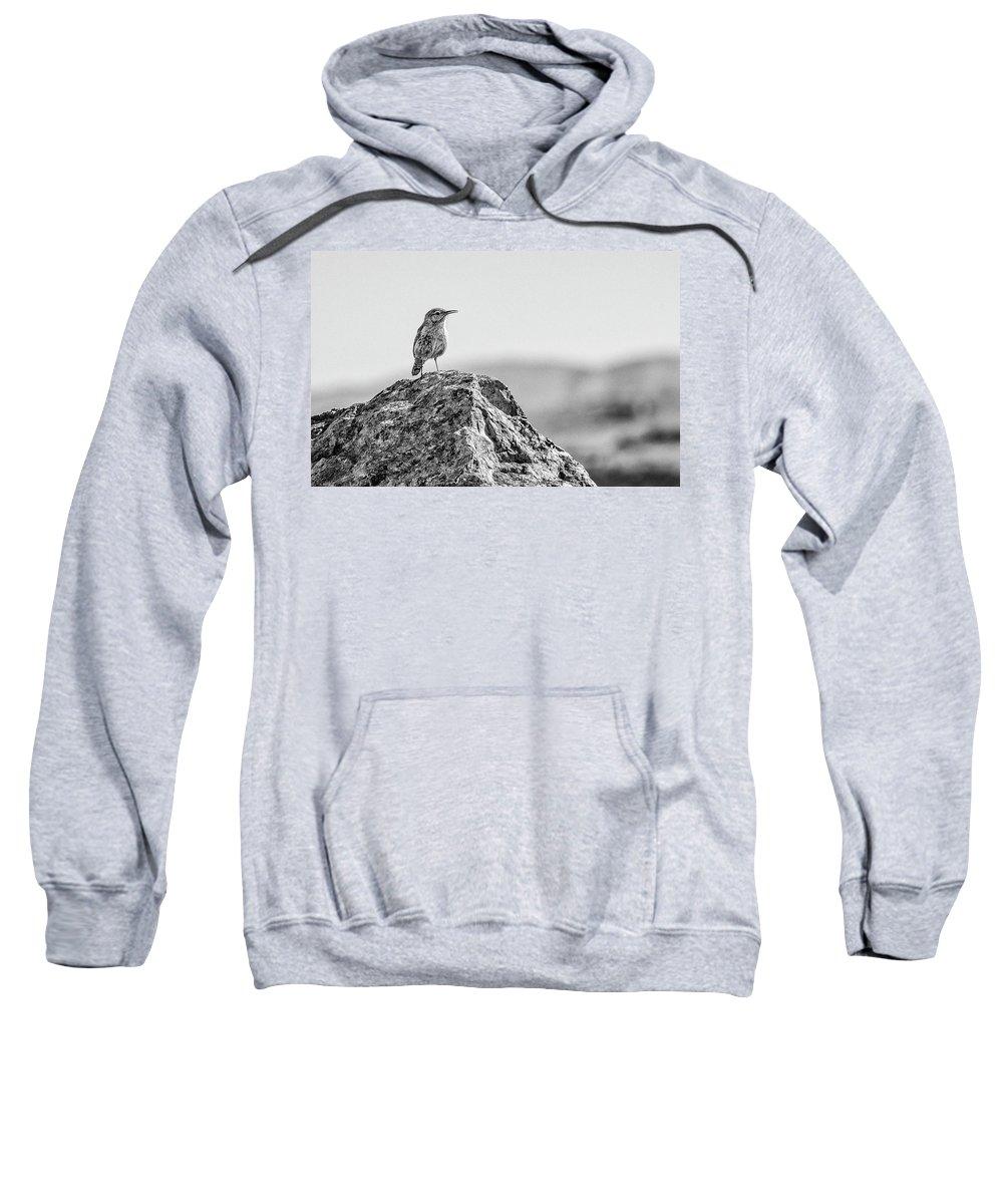 Rock Wren Sweatshirt featuring the photograph Rock Wren 2bw by Rick Mosher