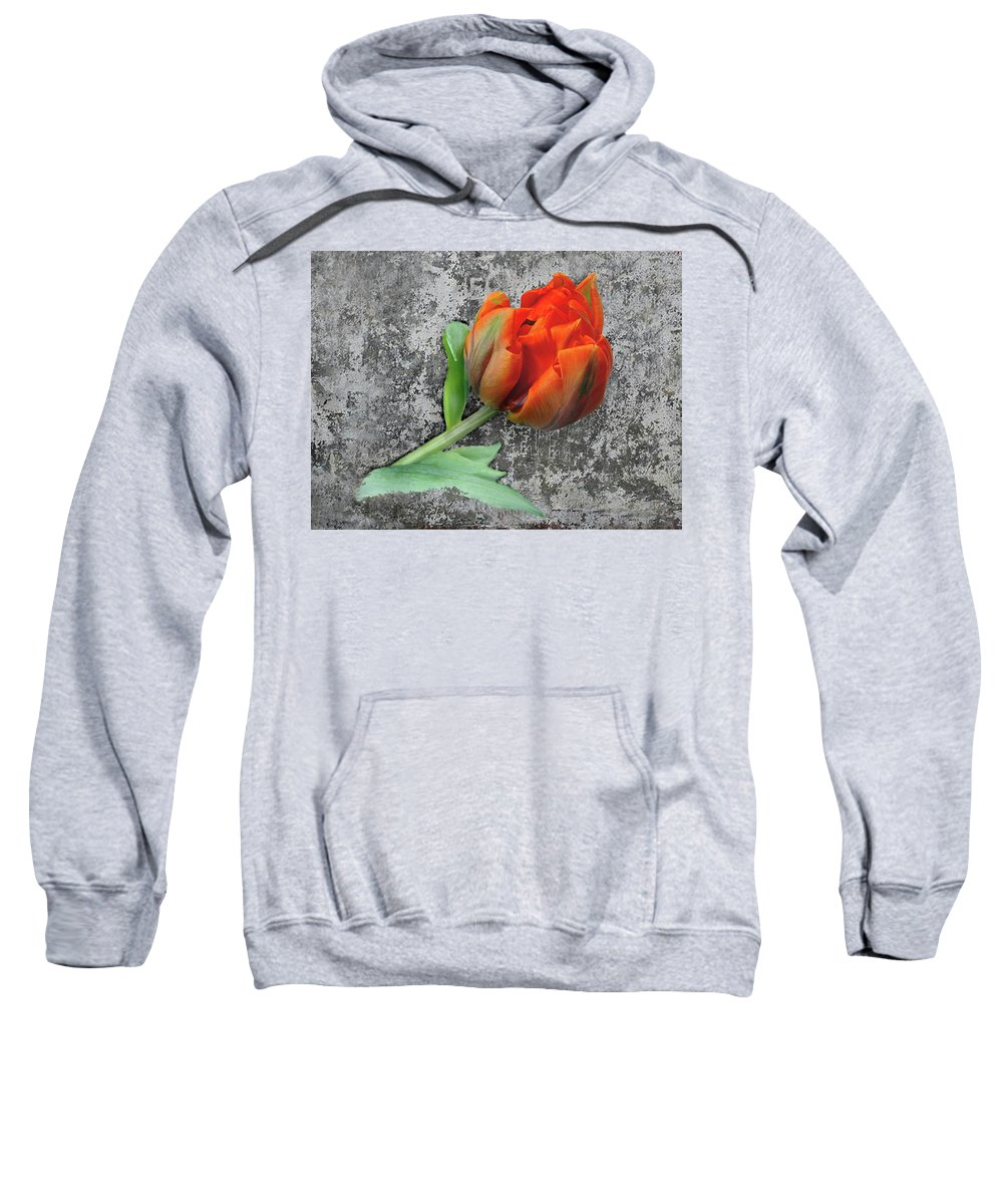 Romantic Sweatshirt featuring the photograph Romantic Tulip by Manfred Lutzius