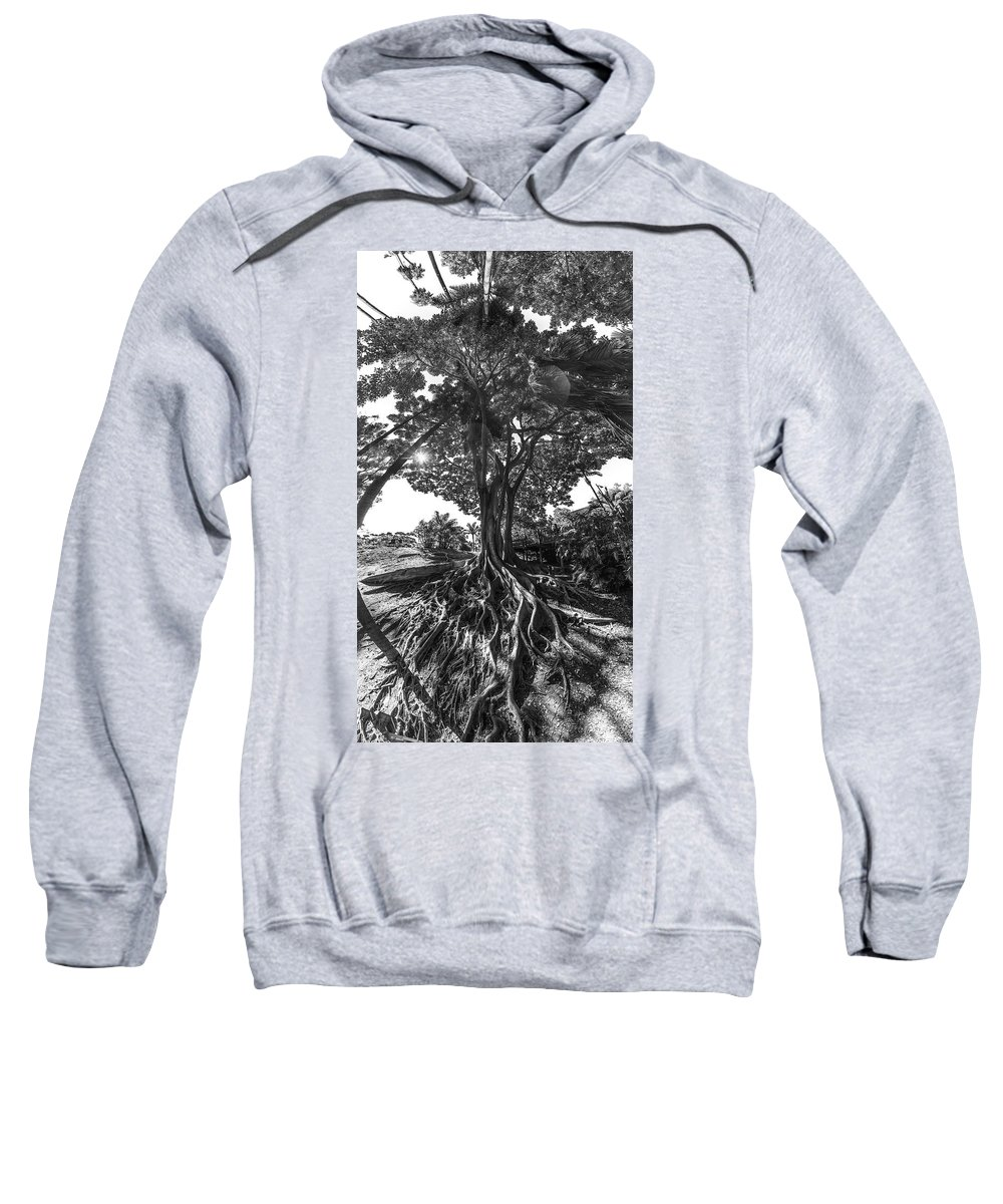 Roots Sweatshirt featuring the photograph Roots To Roof by Scott Campbell
