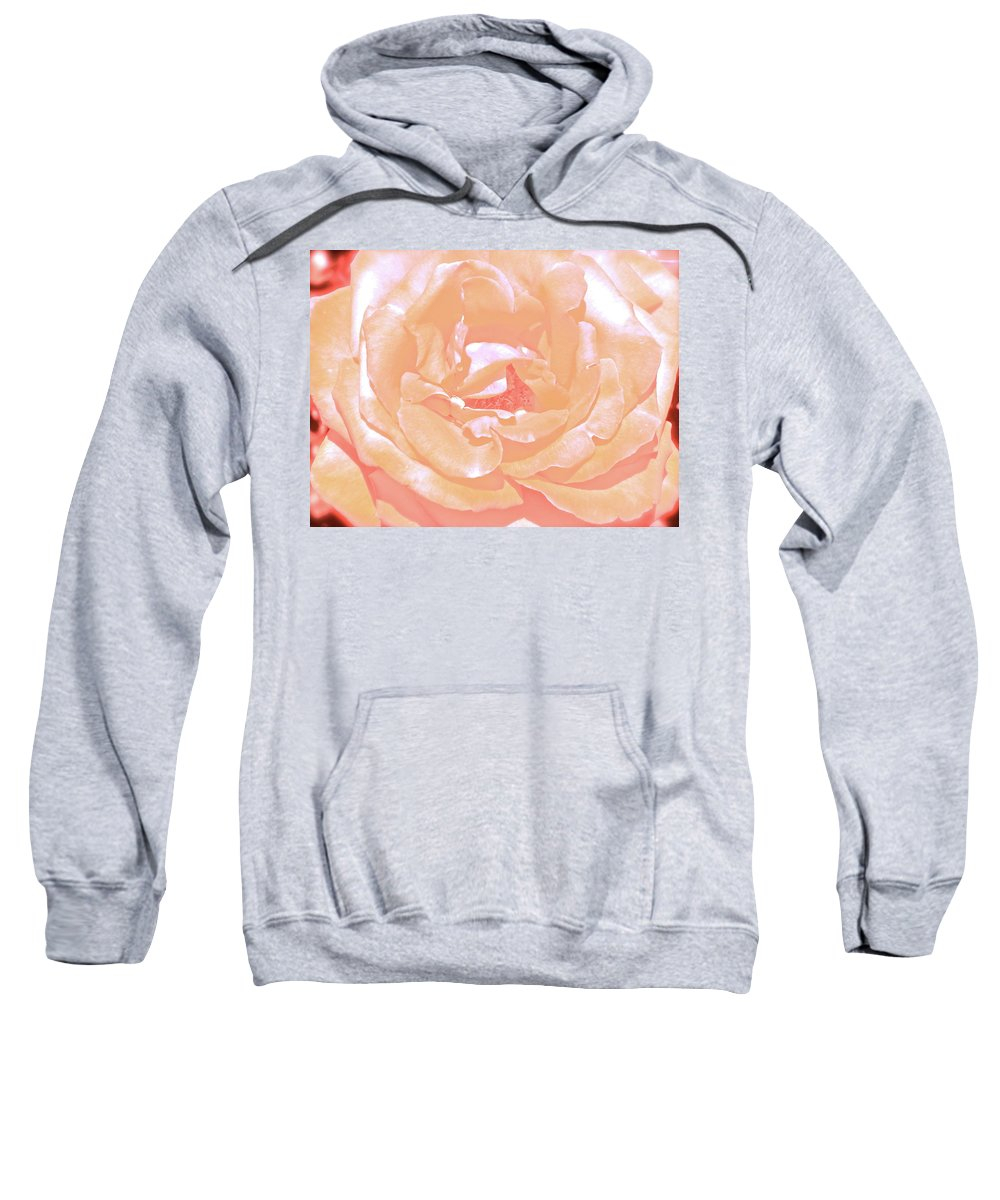 Flower Sweatshirt featuring the photograph Rose 41 by Pamela Cooper