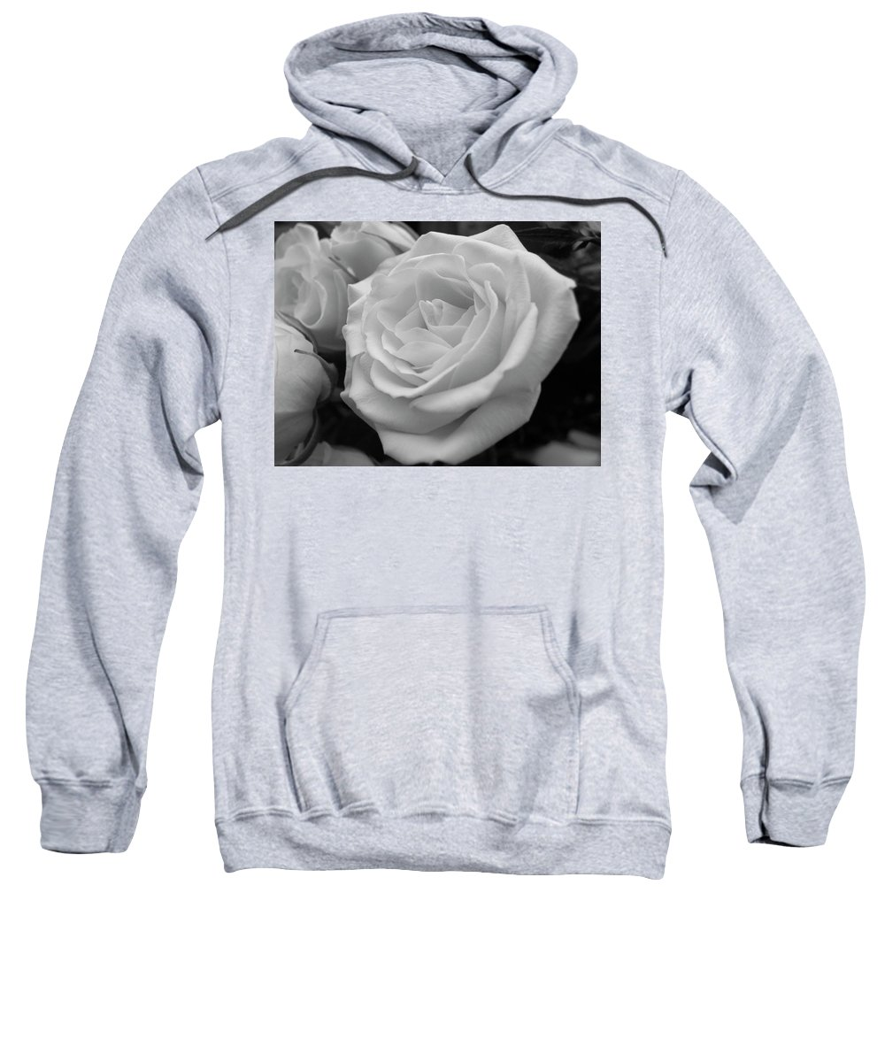 Rose Sweatshirt featuring the photograph Rose 6 by Shannon Turek