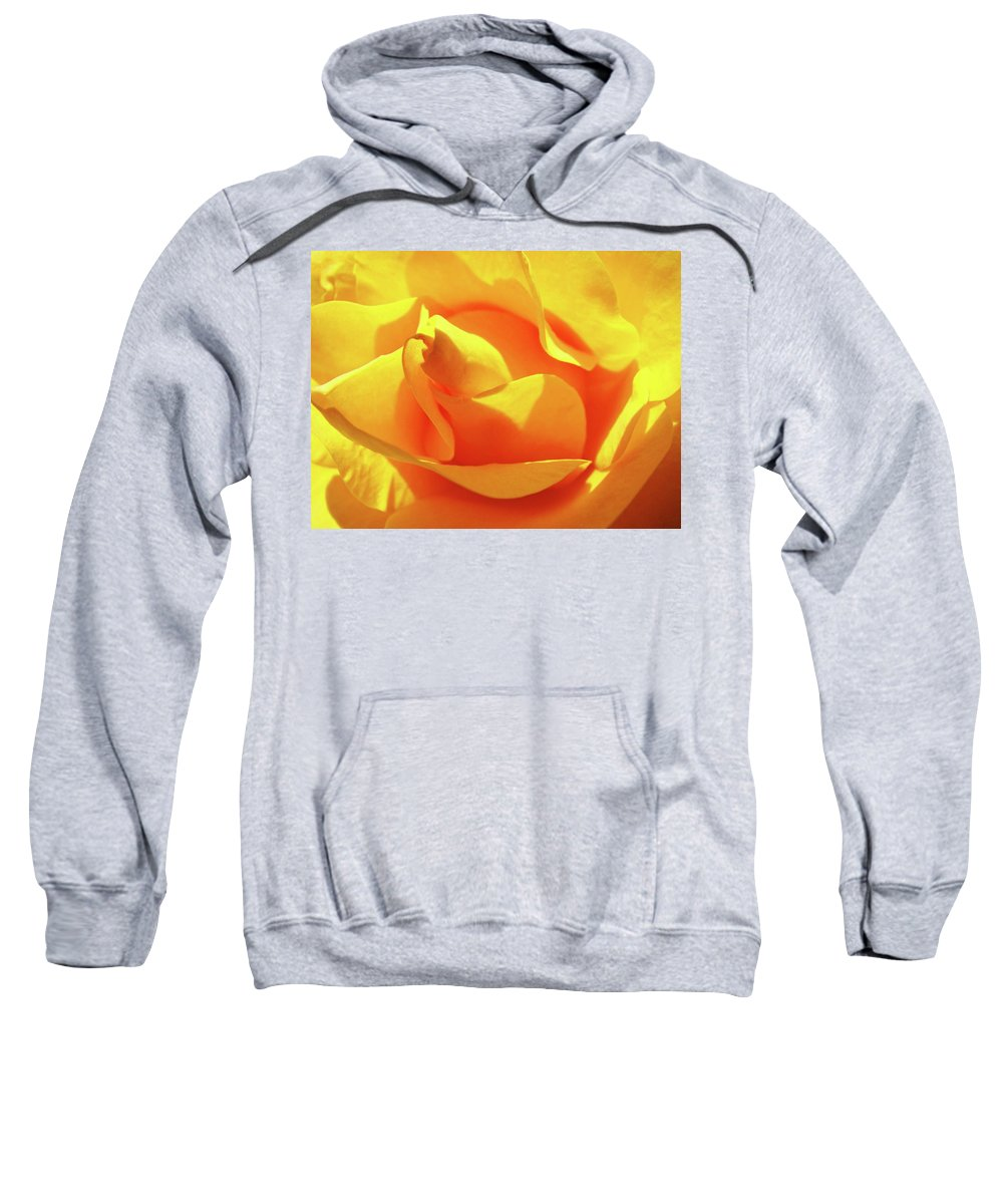Rose Sweatshirt featuring the photograph Rose Bright Orange Sunny Rose Flower Floral Baslee Troutman by Baslee Troutman