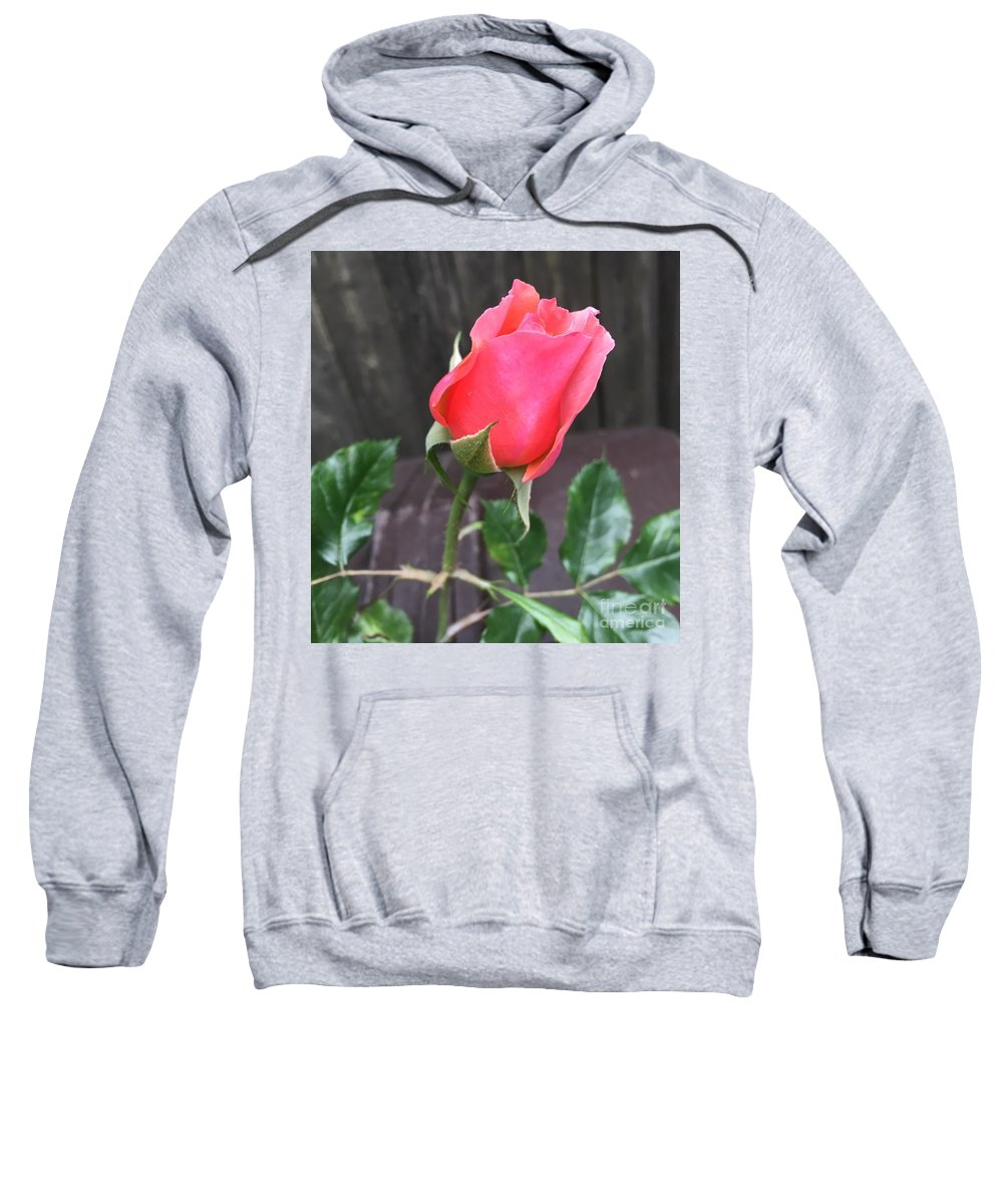 Rose Sweatshirt featuring the photograph Rose Bud by CAC Graphics