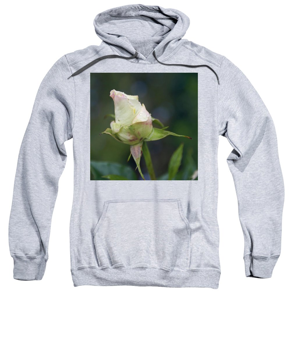 Rose Sweatshirt featuring the photograph Rose Bud by Kevin Gedny