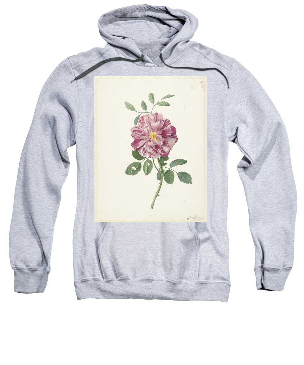 Rose Sweatshirt featuring the painting Rose by MotionAge Designs