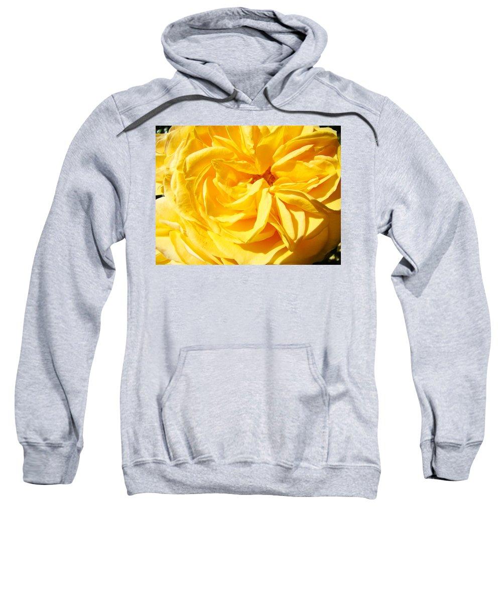Rose Sweatshirt featuring the photograph Rose Spiral Flower Garden Baslee Troutman by Baslee Troutman