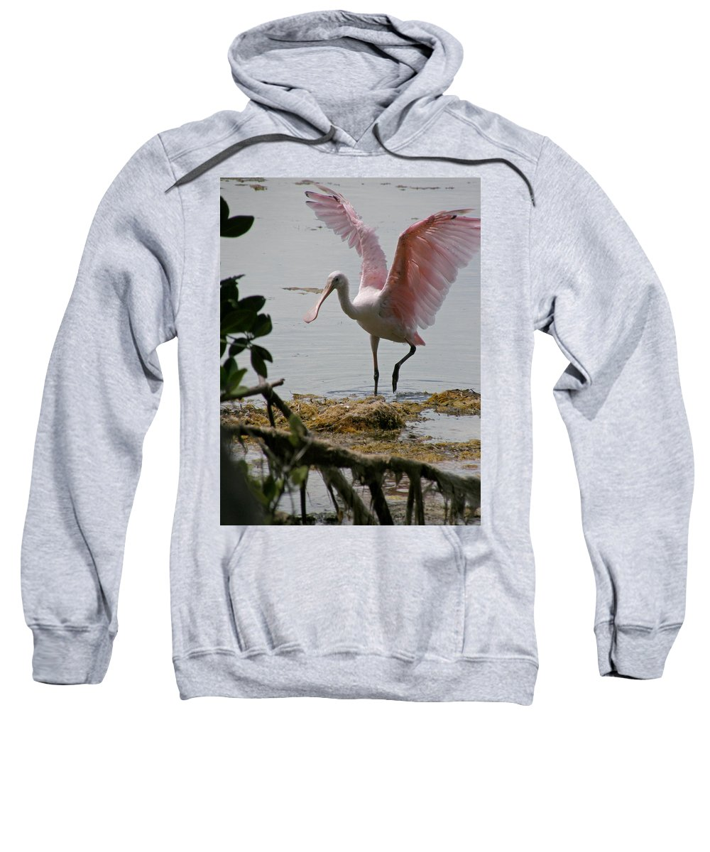 Roseate Spoonbill Sweatshirt featuring the photograph Roseate Wave by Kimberly Mohlenhoff