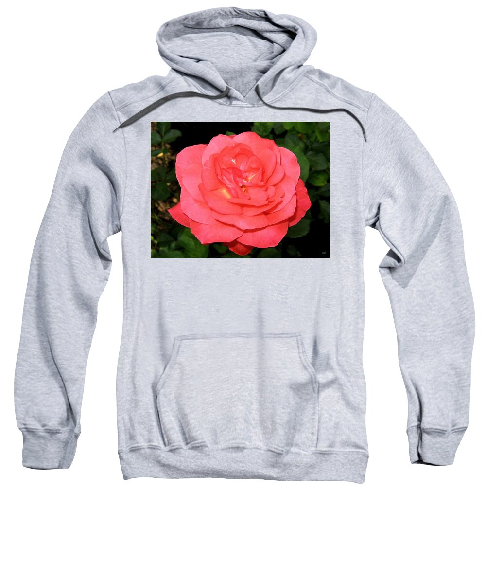 Rose Sweatshirt featuring the photograph Roses 3 by Will Borden
