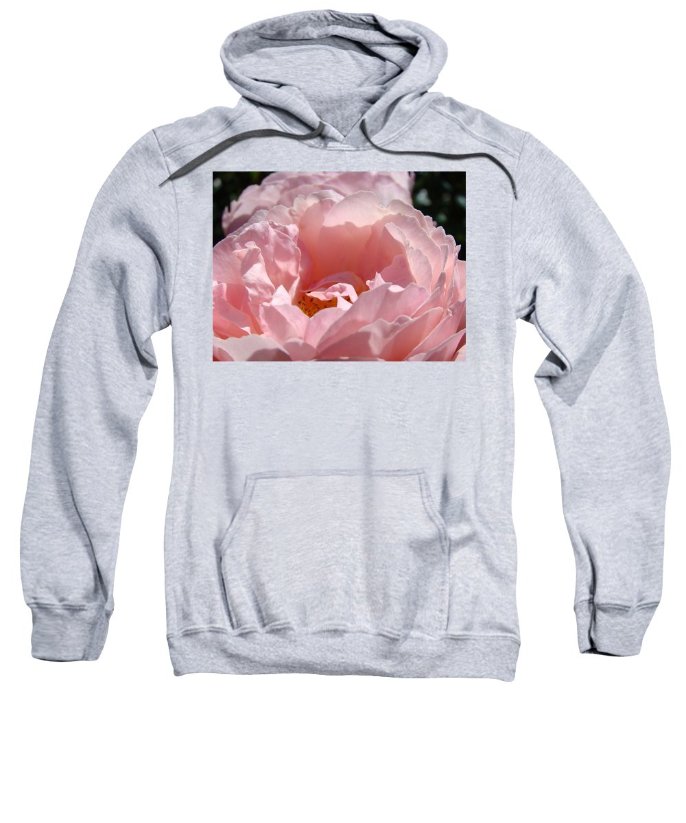 Rose Sweatshirt featuring the photograph Roses Pink Rose Flower 2 Rose Garden Art Baslee Troutman Collection by Baslee Troutman