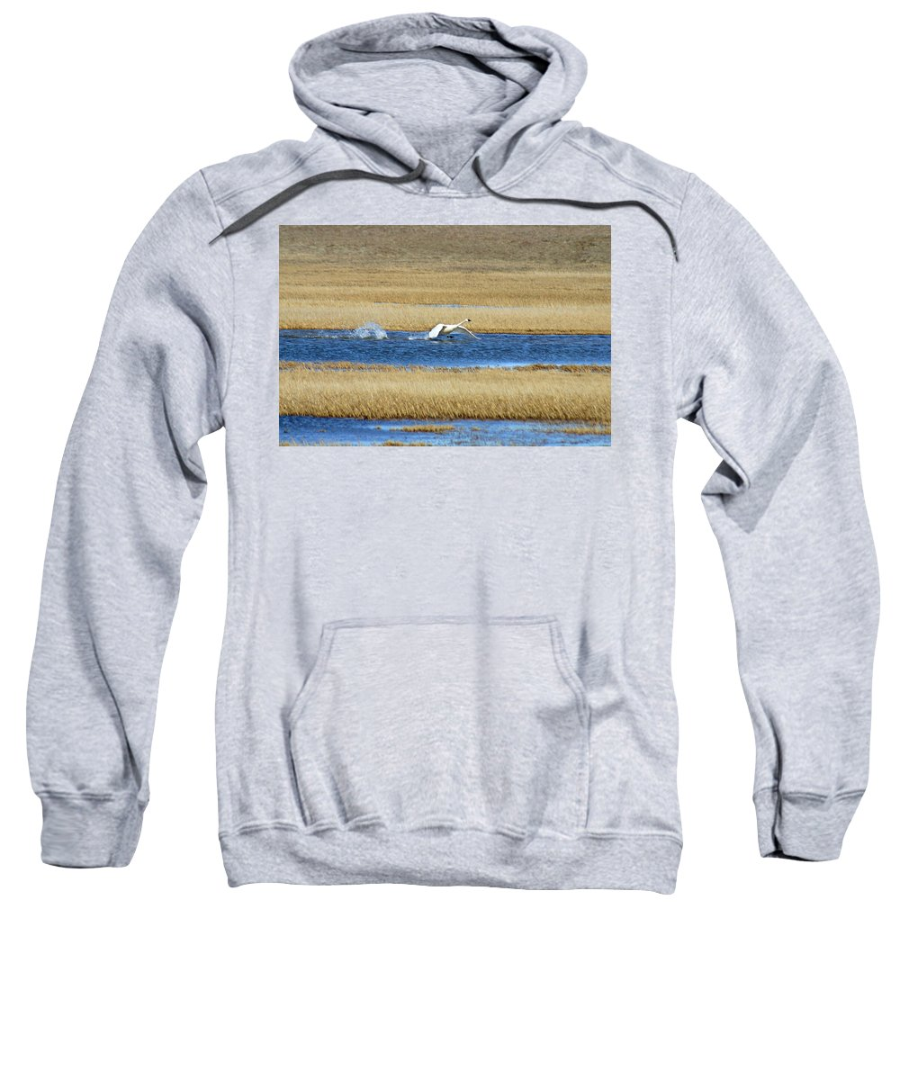 Swan Sweatshirt featuring the photograph Running On Water by Anthony Jones