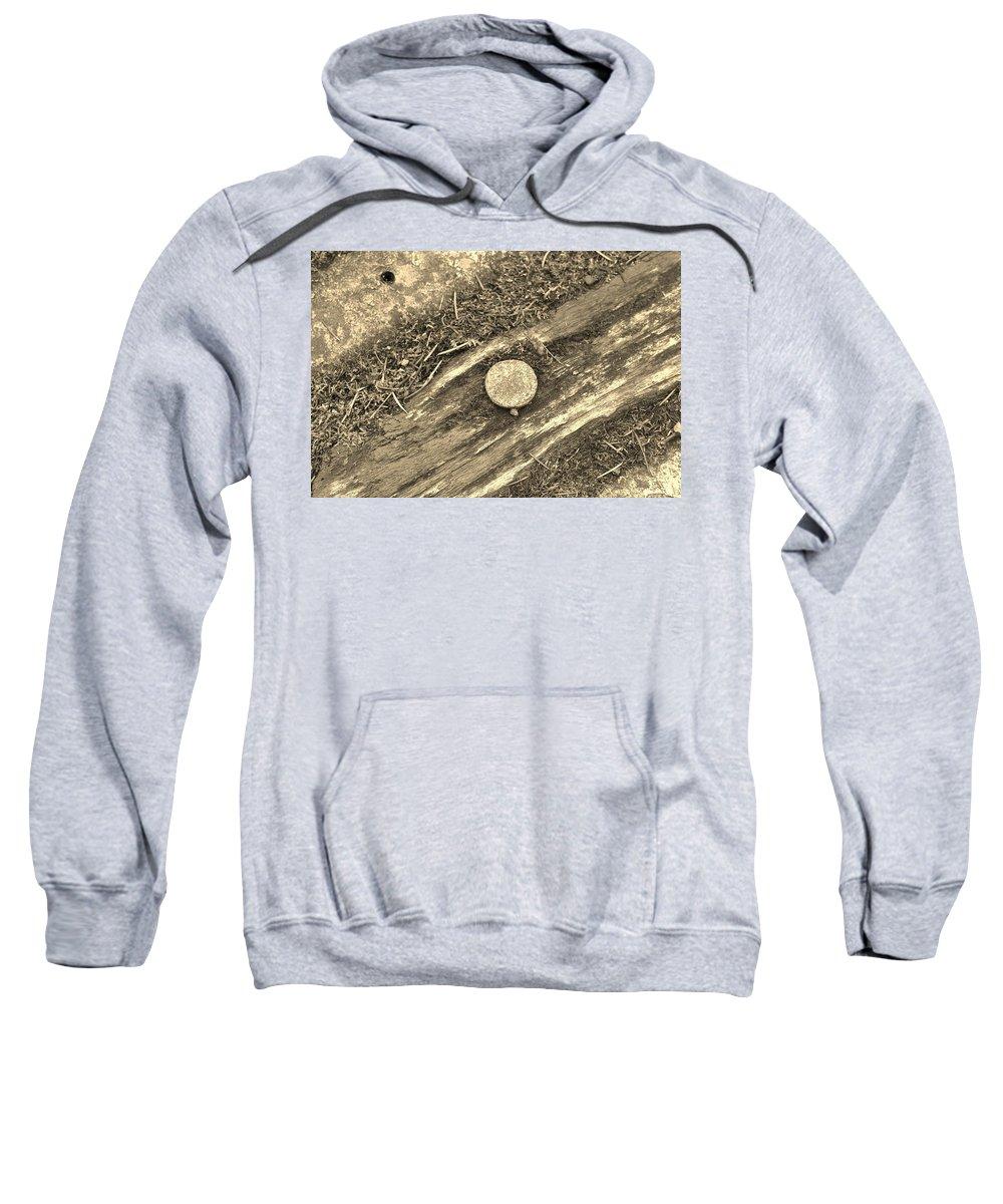 Nail Sweatshirt featuring the photograph Rustic Nail by Jayne Borden