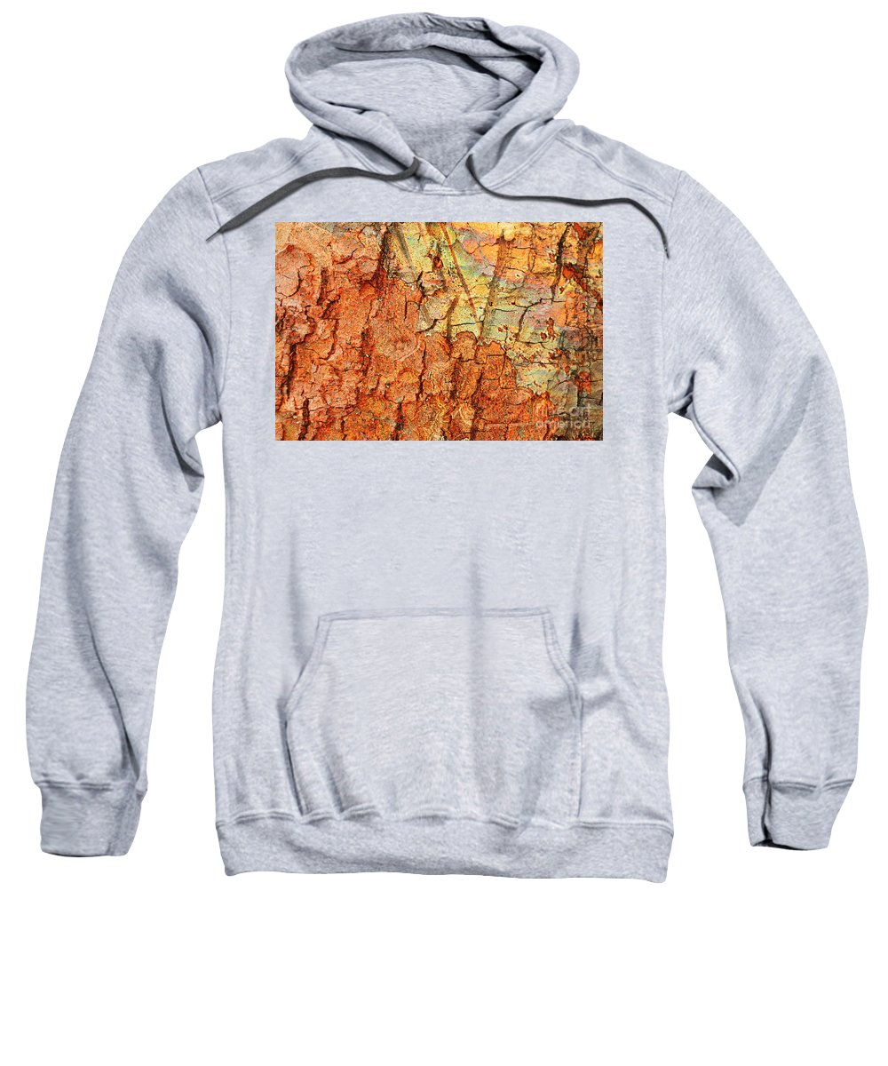 Abstract Sweatshirt featuring the photograph Rusty Bark Abstract by Carol Groenen