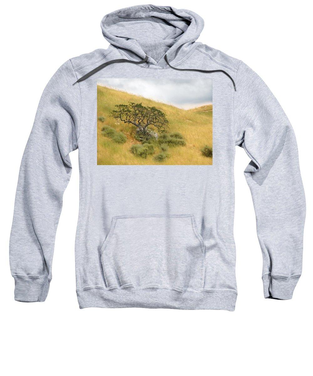 Landscape Sweatshirt featuring the photograph Sage Under Oak by Karen W Meyer