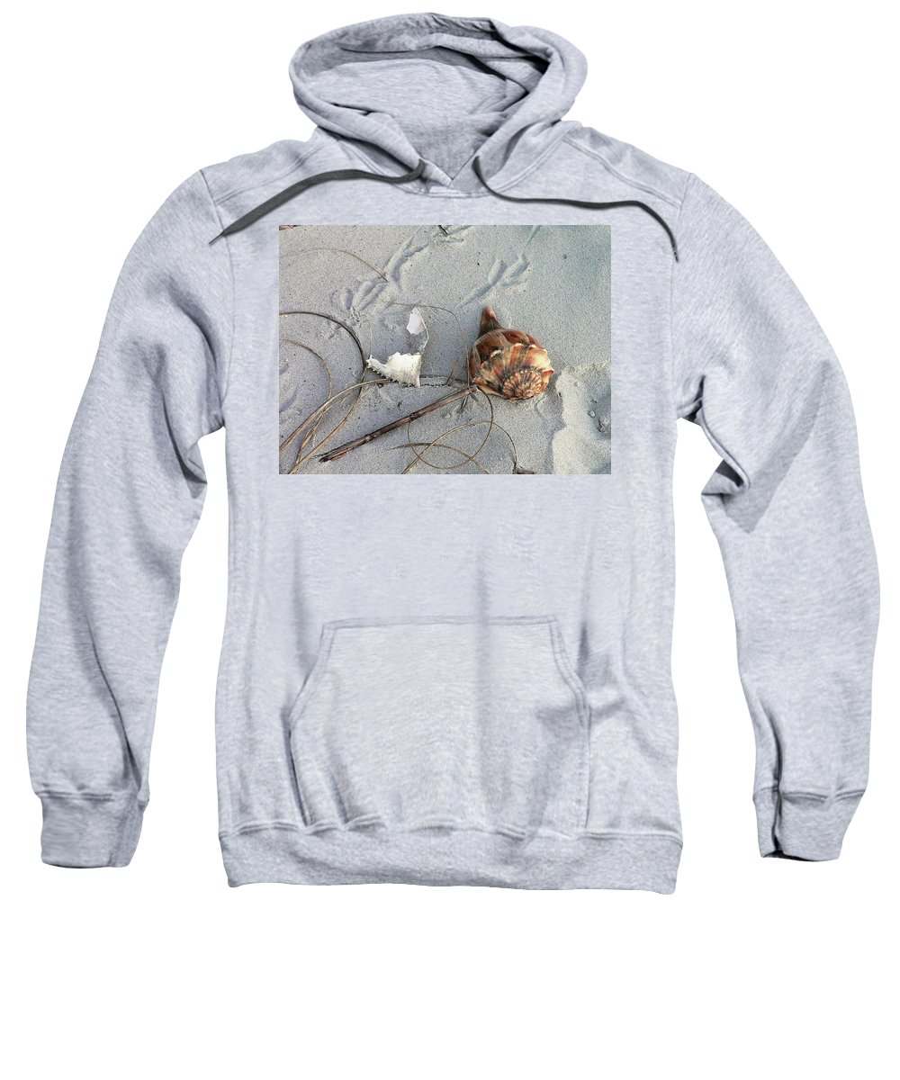 Sand Sweatshirt featuring the photograph Sand And Shells by Al Powell Photography USA