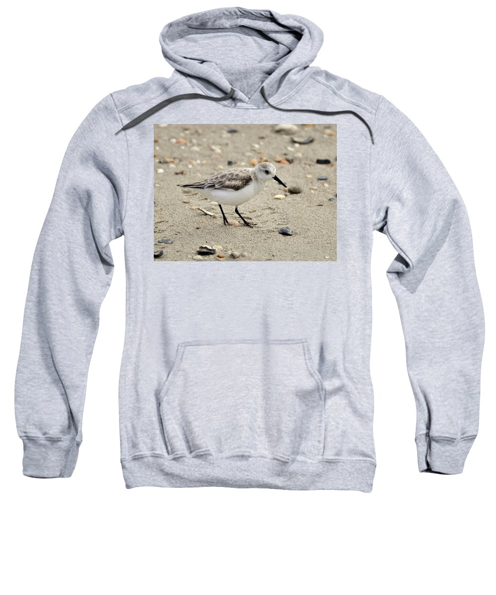 Sanderling Sweatshirt featuring the photograph Sanderling by Al Powell Photography USA