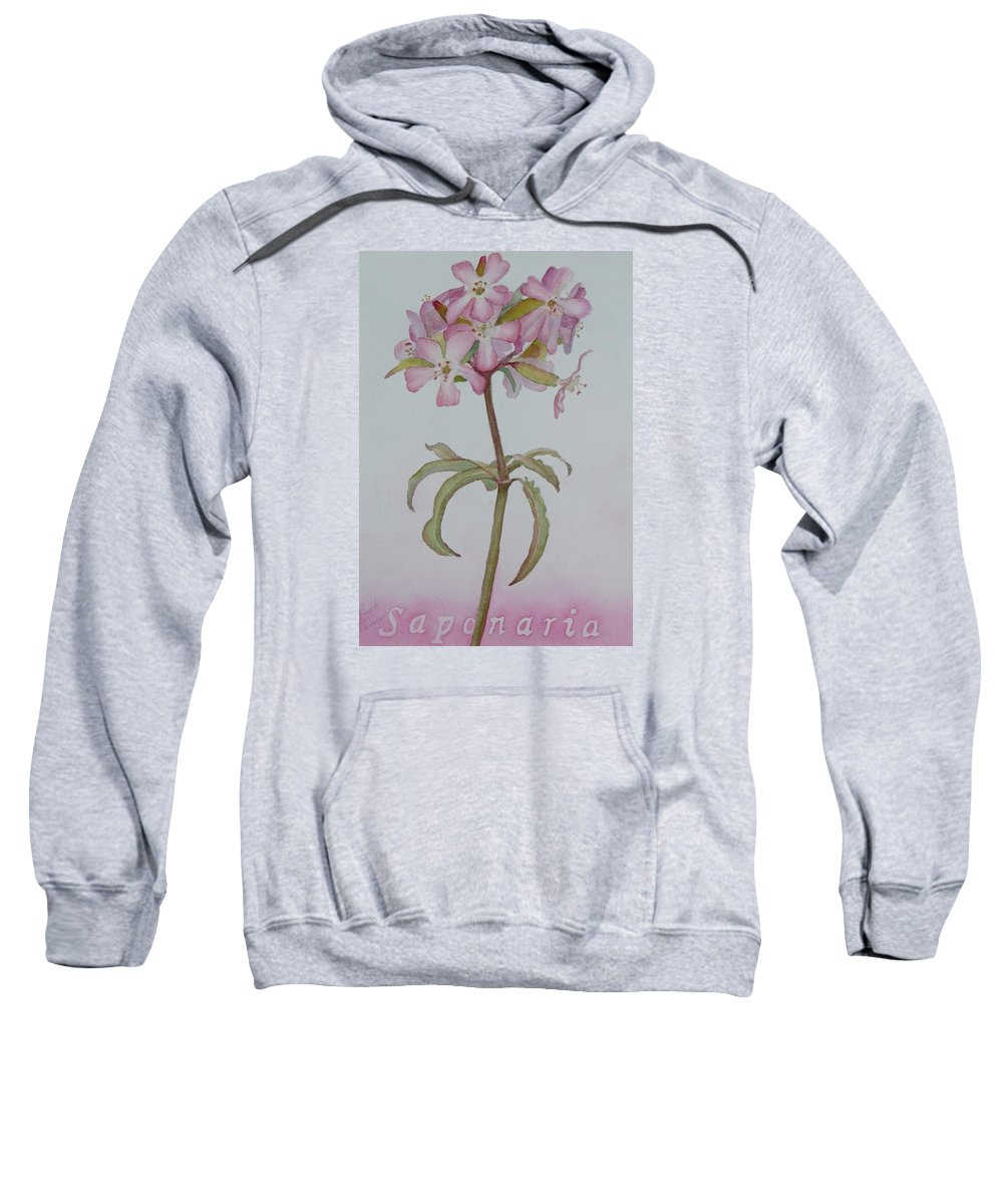 Flower Sweatshirt featuring the painting Saponaria by Ruth Kamenev