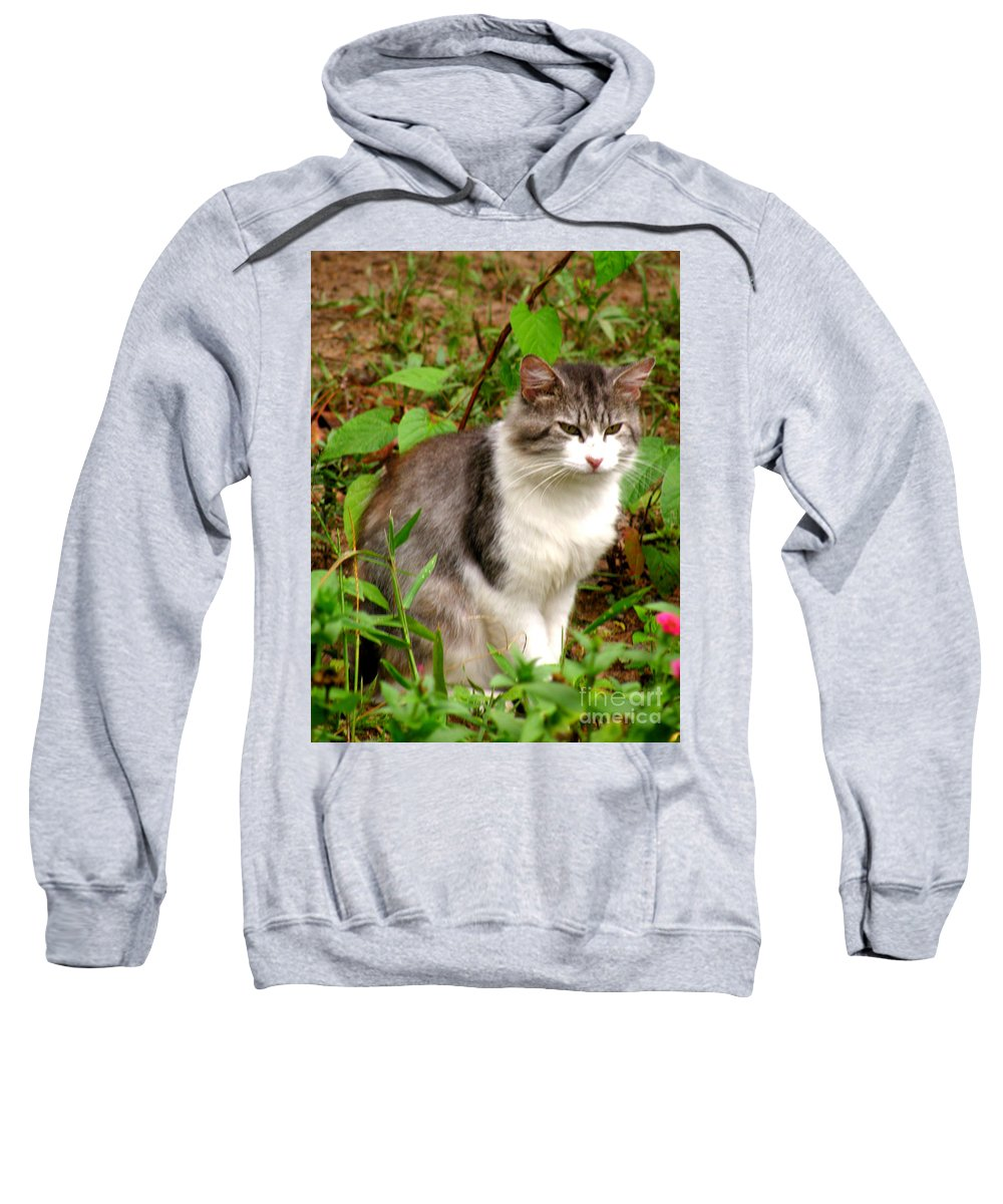 Cat Sweatshirt featuring the photograph Sassy by Donna Brown